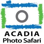 Acadia Photo Safari
